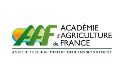 La forêt et le bois en France en 100 questions